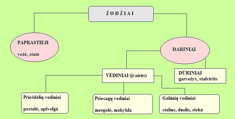 zodziu-skirstymo-schema1